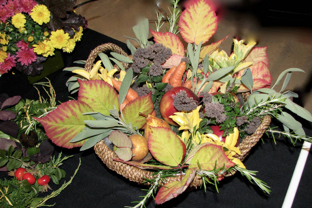 Fall flowers on full display in view royal goldstream news gazette izmirmasajfo