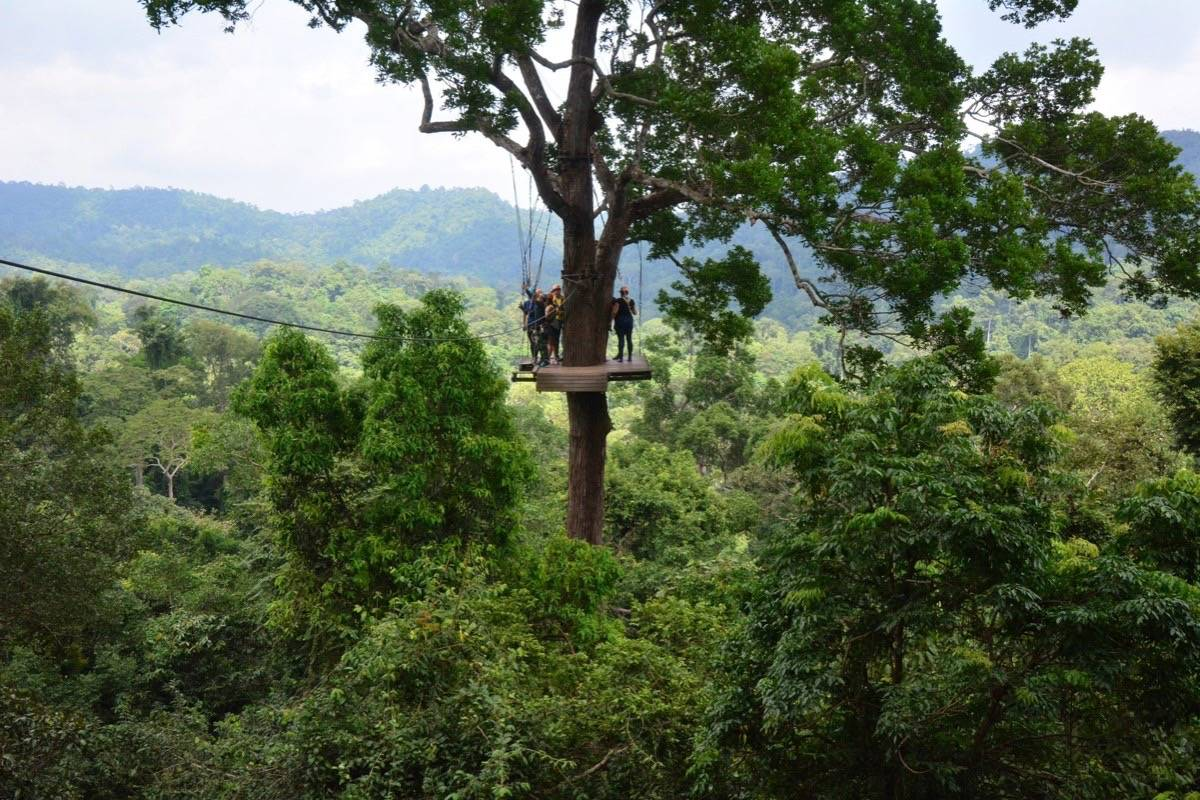 B C  man identified in fatal zipline accident in Thailand